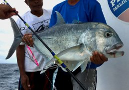 Prohunter Bibless Sinking Minnow with Maldives Giant Trevally