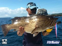 Cebaco Bay Grouper